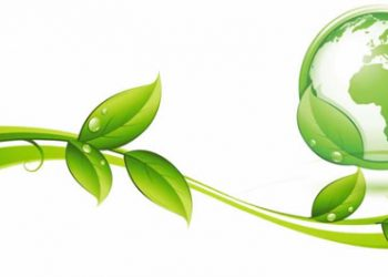 بررسی عملکرد فرایند جذب زیستی