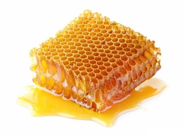 تولید عسل پروبیوتیک