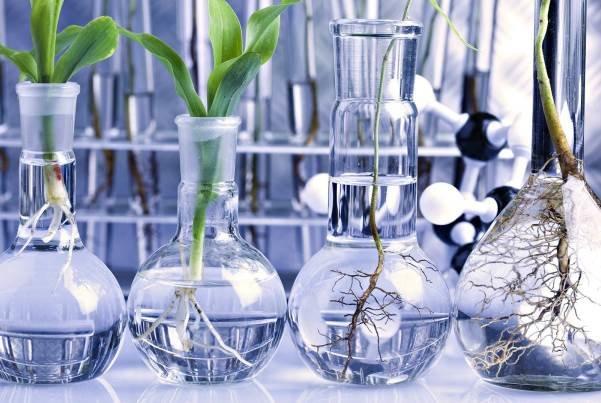 سیستمهای بیولوژیکی از نقطه نظر مصرف اکسیژن