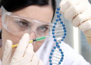 کاربردهای بیوتکنولوژی در صنایع غذایی