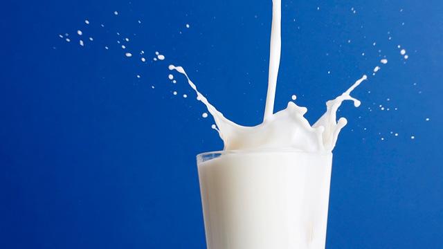 کازئین شیر