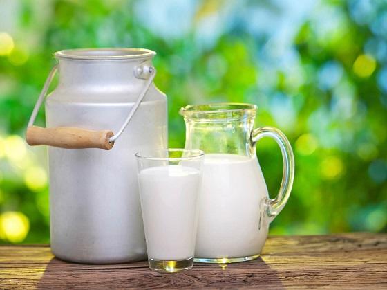 تفاوت ترکیبات شیر گاو و شیر انسان