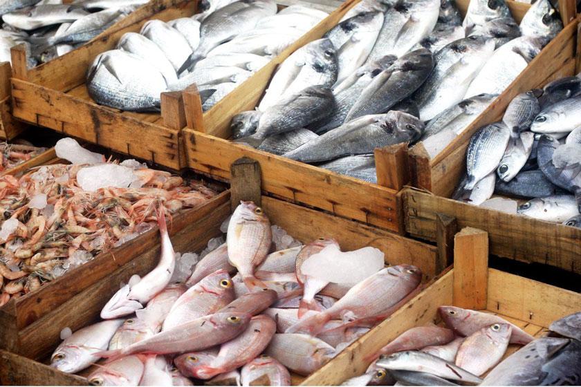 گوشت ماهی