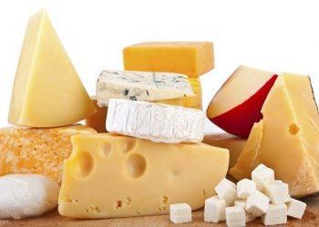 انواع آنزیمهای لخته کننده شیر