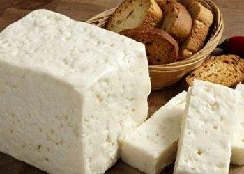 روش تولید پنیر سفید گوسفندی